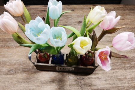 Tulpen einfärben